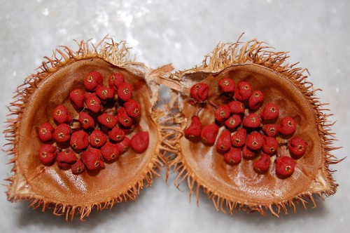 Urucu e1300252236368 10 of the Most Exotic Tropical Fruits on Earth